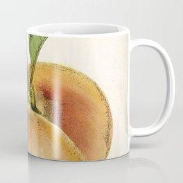 A peach plant - vintage illustration Coffee Mug