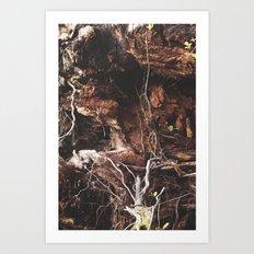 Root Of It All Art Print