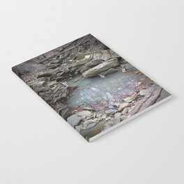 Mirrored Riverbed Notebook