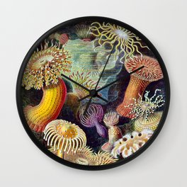 Anemones by Haeckel (Sea Plants and Flowers) Wall Clock
