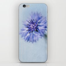 Cornflower Dreams iPhone & iPod Skin