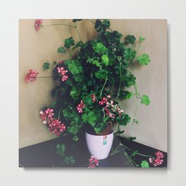 Flower R2 Metal Print
