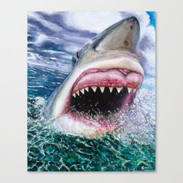 White Shark in Africa Canvas Print