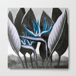 Birds of Paradise Temple of Flora Blue Gray Metal Print