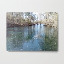 Fanning Springs, Florida Metal Print