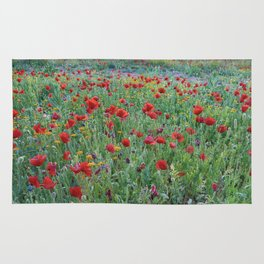 """""""Red dreams"""" Poppies at sunset Rug"""