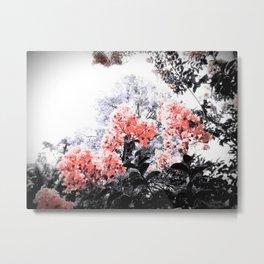 Coral Pink Peach & Gray Floral Metal Print