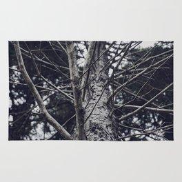 Grace Beneath The Pines II Rug