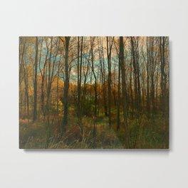 Fall Encroachment Metal Print