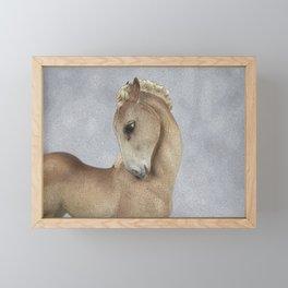 Young Horse Framed Mini Art Print