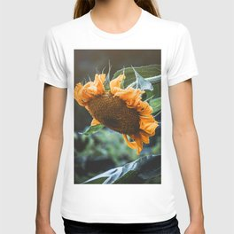 Pondering Sunflower Photograph T-shirt