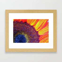 Center of attention Framed Art Print