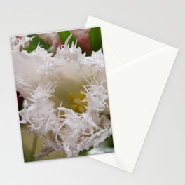 Spiney Tulip Stationery Cards