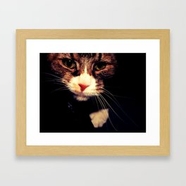 Gidget Framed Art Print