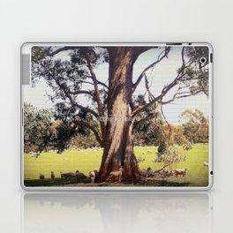Under the shade of a coolabah Tree Laptop & iPad Skin