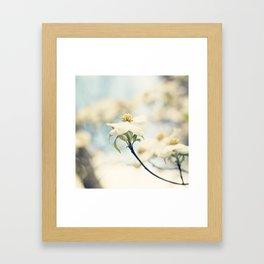 Love, the Dogwood Framed Art Print
