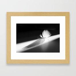 Pluma al sol Framed Art Print