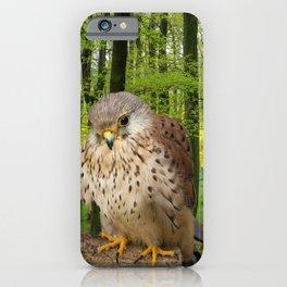 Little hawk -  wildlife photography iPhone Case
