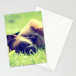 Bedtime for the small puppies Stationery Cards