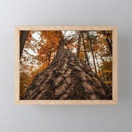 Always Look Up! Framed Mini Art Print