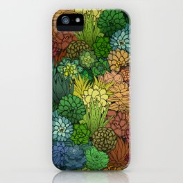 Succulent Garden Rainbow iPhone Case