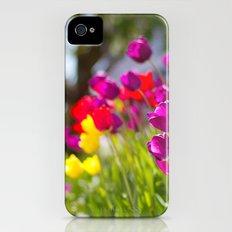 Tulips iPhone (4, 4s) Slim Case