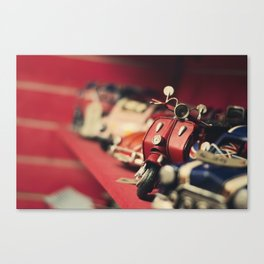 Beauty in red Canvas Print