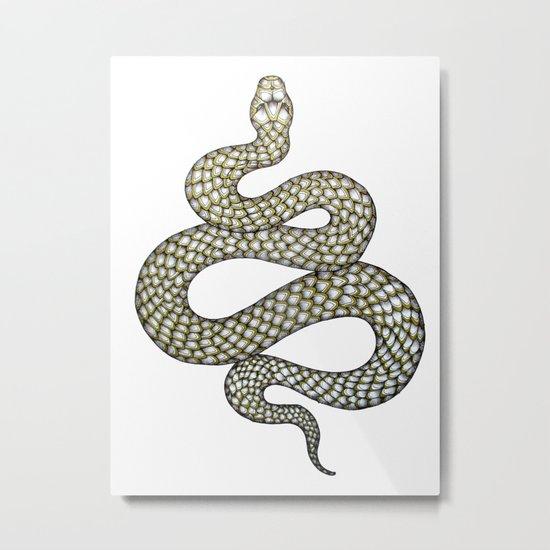 Snake's Charm Metal Print