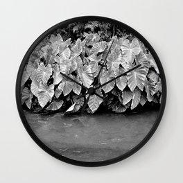Taro plants Wall Clock