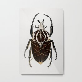 """Stifled""- Painting of Goliath beetle wrapped in gold string Metal Print"