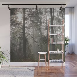 Calm morning... Into the foggy woods Wall Mural