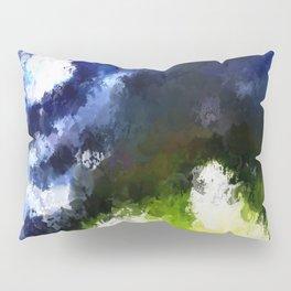Reacquired Pillow Sham