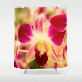 Orchids In Thai Shower Curtain