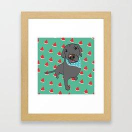 Benji, The Labrador Retriever Framed Art Print