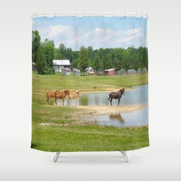 Horses. Animals. Nature Photography. Pennsylvania Shower Curtain