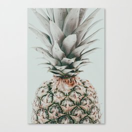 The Pineapple Canvas Print
