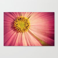 cosmos Canvas Prints featuring Cosmos by KunstFabrik_StaticMovement Manu Jobst