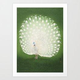 Marvellous Peacock - Vintage Japanese woodblock print Art Art Print