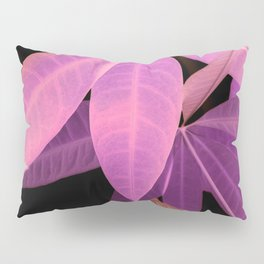 Pachira aquatica #2 #decor #art #society6 Pillow Sham