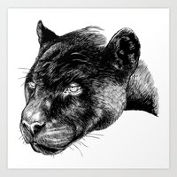 panther Art Prints featuring Panther by Mark Matlock