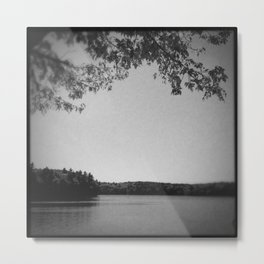On the bank of Walden Pond Metal Print