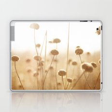 field of light Laptop & iPad Skin
