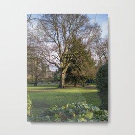 Museum Gardens, York Metal Print