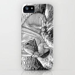 asc 677 - Les ailes du désir (The swain in disguise) iPhone Case