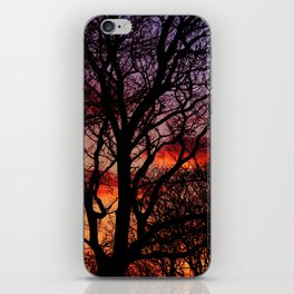 Winter Trees iPhone Skin