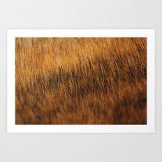 Brindle Fur Art Print