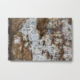 Stone Wall Structure with dried up Plants Metal Print
