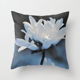 #37 Throw Pillow
