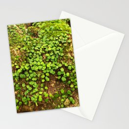 Moss is slow life Stationery Cards