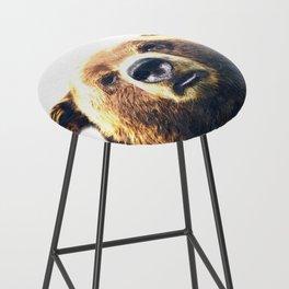 Bear portrait Bar Stool